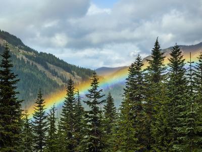 https://imgc.artprintimages.com/img/print/usa-washington-state-crystal-mountain-rainbow-in-valley-through-trees_u-l-q1gxlnp0.jpg?artPerspective=n