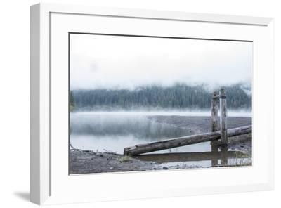 USA, Washington State, Mt. Baker Snoqualmie National Forest. Morning fog Horseshoe Cove Campground -Trish Drury-Framed Photographic Print