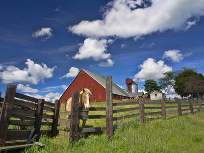 https://imgc.artprintimages.com/img/print/usa-washington-state-palouse-country-colfax-old-red-barn-with-a-horse_u-l-q1d2bse0.jpg?p=0
