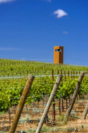 USA, Washington, Yakima Valley. Col Solare Winery and Vineyard-Richard Duval-Photographic Print