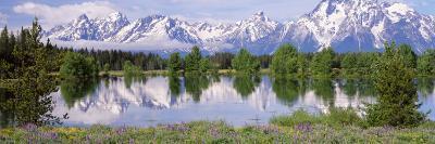 Usa, Wyoming, Grand Teton National Park-Jeff Foott-Photographic Print
