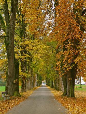 Benediktbeuern, Autumn