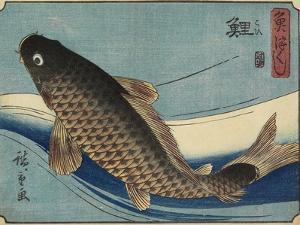 Carp, 1830-1844 by Utagawa Hiroshige