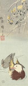 Chrysanthemum and Mandarin Ducks, February 1854 by Utagawa Hiroshige