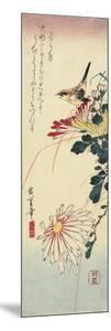 Chrysanthemums and a Shrike, 1830-1858 by Utagawa Hiroshige