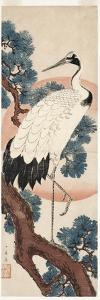 Crane in Pine Tree at Sunrise, 1850-55 by Utagawa Hiroshige