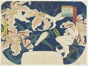 Gift: Spotted Lilies, C. 1844 by Utagawa Hiroshige