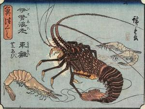 Lobster, Prawn and Shrimps, 1830-1844 by Utagawa Hiroshige
