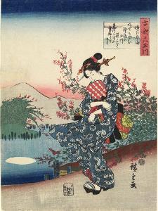 Noji in Omi Province, 1843-1847 by Utagawa Hiroshige