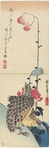 Quail and Poppies, 1830-1858 by Utagawa Hiroshige