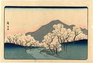 Sakura Namiki Zu by Utagawa Hiroshige