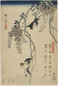 Swallows Flying Through Wisteria Vines, 1837-1844 by Utagawa Hiroshige