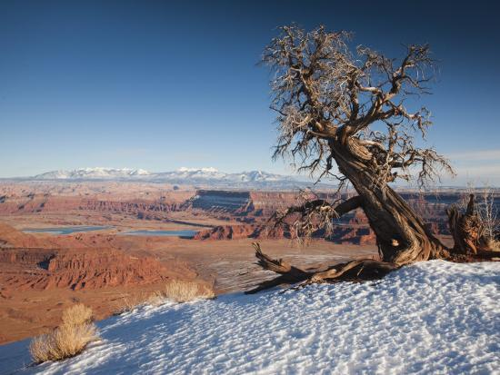 Utah, Moab, Dead Horse Point State Park, View of the Meander Canyon, Winter, USA-Walter Bibikow-Photographic Print