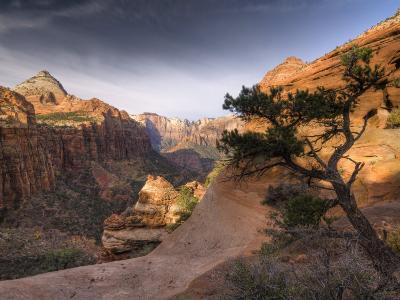 Utah, Zion National Park, from Canyon Overlook, USA-Alan Copson-Photographic Print