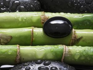 Black Stone on Bamboo by Uwe Merkel