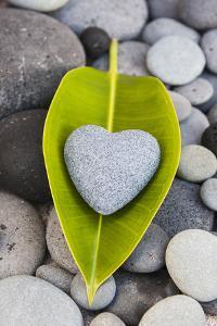 Heart Made of Stone on Green Leaves by Uwe Merkel