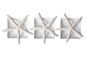 Starfishes by Uwe Merkel