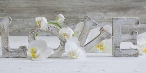 Wooden Letters 'Love' with Orchid Blossoms by Uwe Merkel