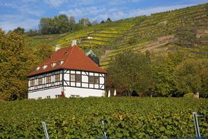 Wine-Growing Museum Hoflš§nitz in the Vineyards in Radebeul Near Dresden by Uwe Steffens
