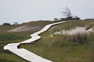 Wooden Path Through the Dune Scenery at Darsser Ort Boat on the Darss Peninsula by Uwe Steffens