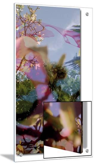 V?g?taux 11, c.2008-Nicolas Le Beuan B?nic-Art on Acrylic