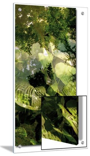 V?g?taux 14, c.2008-Nicolas Le Beuan B?nic-Art on Acrylic