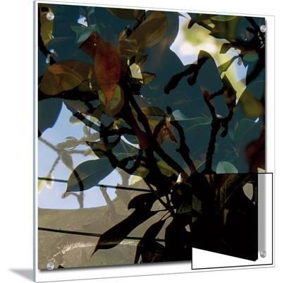 V?g?taux 15, c.2008-Nicolas Le Beuan B?nic-Art on Acrylic