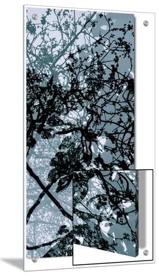 V?g?taux 17, c.2008-Nicolas Le Beuan B?nic-Art on Acrylic