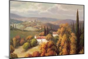 Tuscan Panorama by Vail Oxley