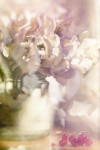 From an English Garden by Valda Bailey
