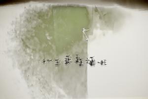 Lakeside Calligraphy by Valda Bailey