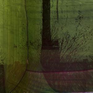 The Garden Awakes by Valda Bailey
