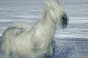 Unbroken Spirit by Valda Bailey