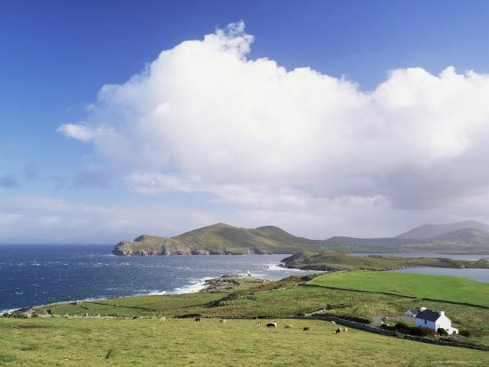 Valentia Island, County Kerry, Munster, Eire (Republic of Ireland)-Roy Rainford-Photographic Print