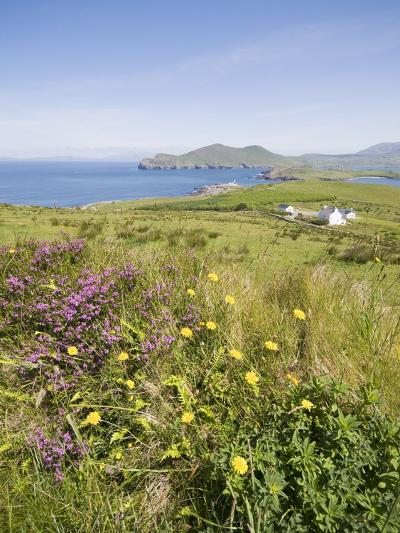 Valentia Island, Ring of Kerry, County Kerry, Munster, Republic of Ireland, Europe--Photographic Print