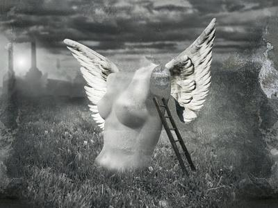Angel In Pollution