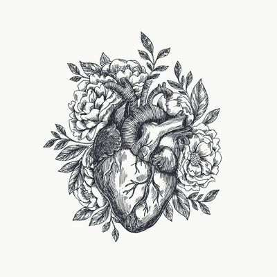 https://imgc.artprintimages.com/img/print/valentines-day-card-anatomical-heart-with-flowers-vector-illustration_u-l-q1am61a0.jpg?p=0