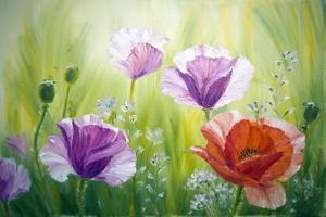 Poppies In The Morning, Oil Painting On Canvas by Valenty