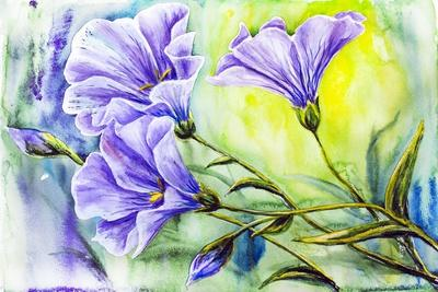 Wildflowers. Watercolor Painting