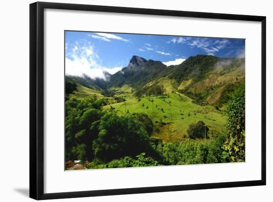 Valley of Cocora-Tan Yilmaz-Framed Photographic Print