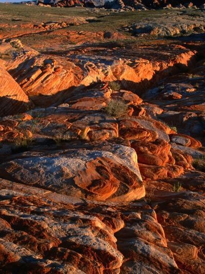 Valley of Fire State Park, Nevada's Oldest State Park, Valley of Fire State Park, Nevada, USA-Carol Polich-Photographic Print