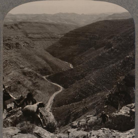 'Valley of the Arno, shepherd and sheep in foreground', c1900-Unknown-Photographic Print
