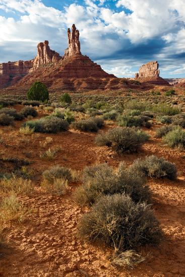 Valley of the Gods, Utah-Susan Degginger-Photographic Print