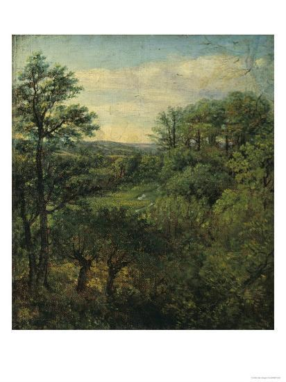 Valley Scene with Trees-John Constable-Giclee Print