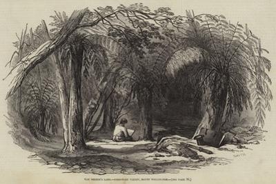 Van Diemen's Land, Fern-Tree Valley, Mount Wellington