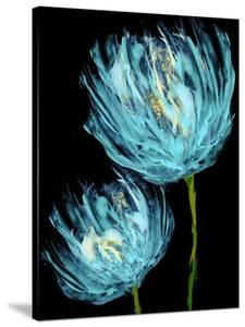Aqua Tulips II by Vanessa Austin
