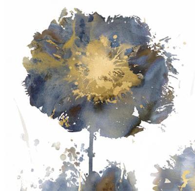 Flower Burst I by Vanessa Austin