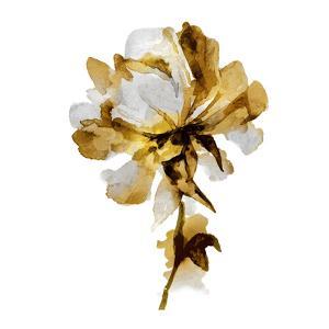 Fresh Bloom I by Vanessa Austin