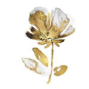 Fresh Bloom II by Vanessa Austin