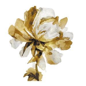 Fresh Bloom III by Vanessa Austin